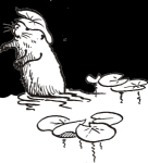 Drawing of beaver with lily pad cap, original artwork by Hope Sawyer Buyukmihci