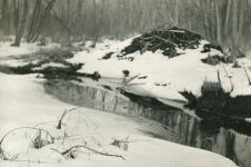 Beaver lodge with snow, photo by Hope Sawyer Buyukmihci (1966)