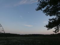 Half moon over main pond, Unexpected Wildlife Refuge photo