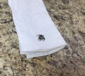 Jumping spider in Miller House, Unexpected Wildlife Refuge photo